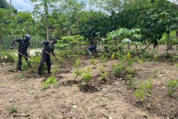 missionaries, agricultural missionaries, haitian missionaries